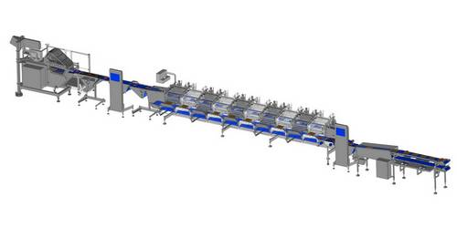 Proconcept complete automatic line for smoked salmon, smoked trout and other smoked fishes